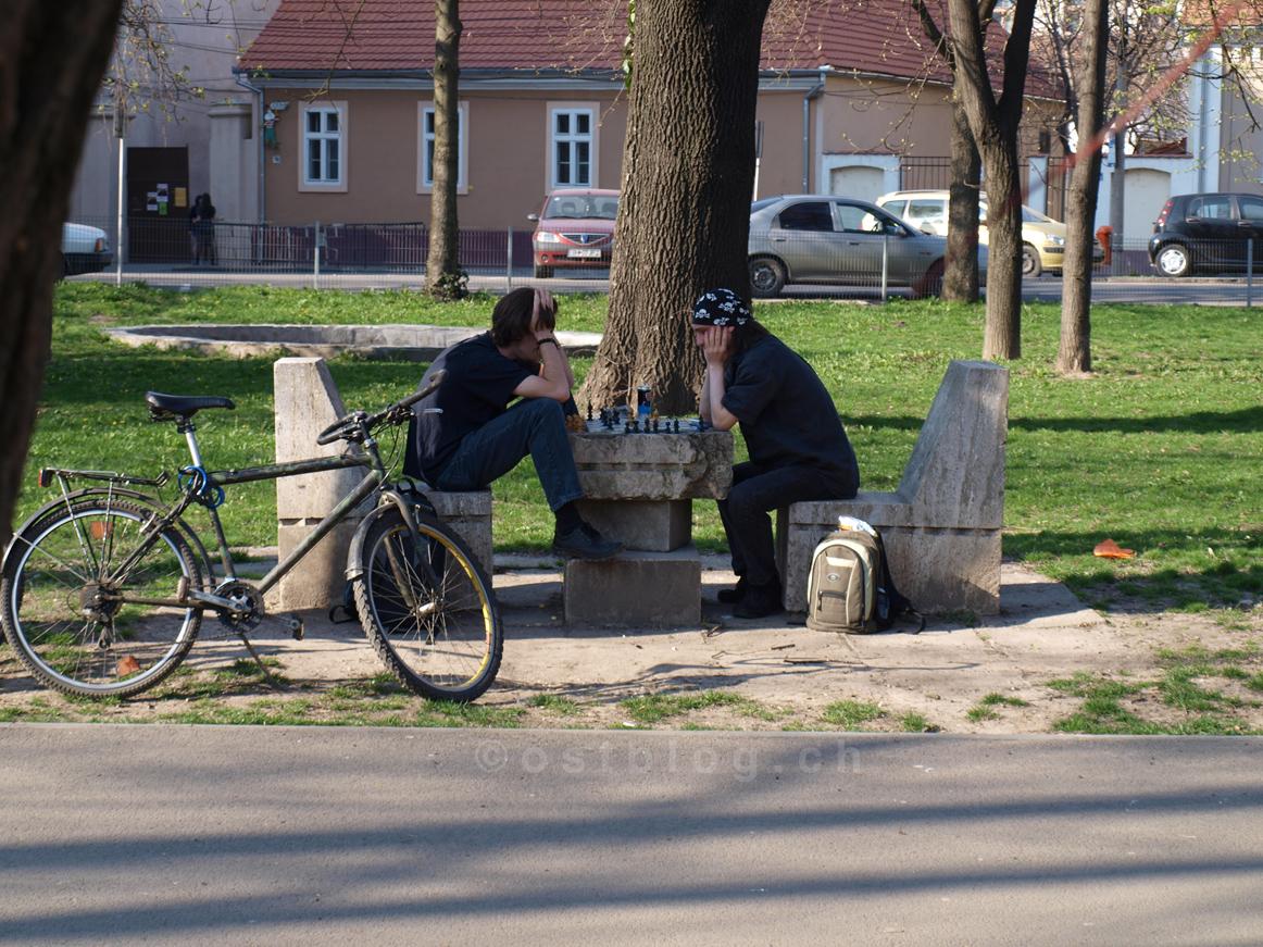 Schachspieler auf dem Piata Libertatii in Oradea, Rumänien