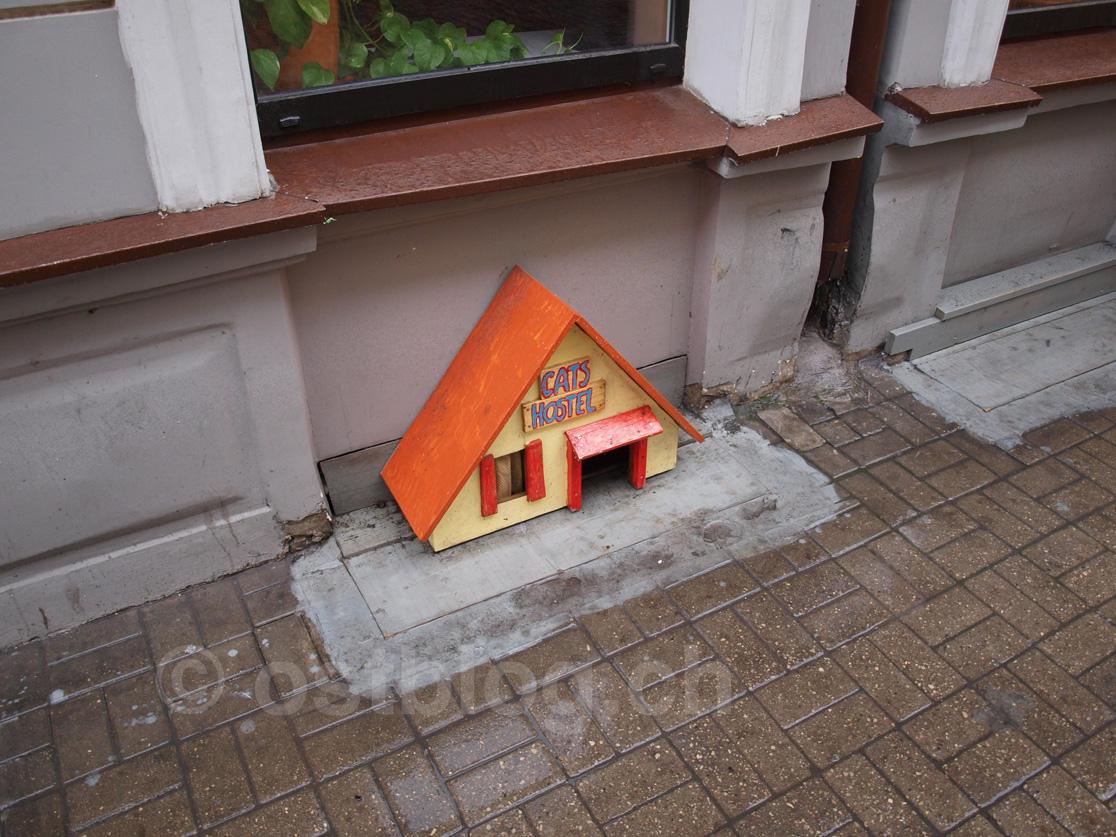 Riga Cat Hostel